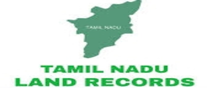 patta online, tamil nadu land records, patta chitta website, tamil nadu land survey map, online patta name change in tamilnadu, ec online, fmb sketch, patta chitta online status